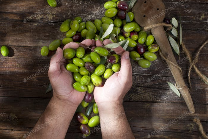 Large green olives