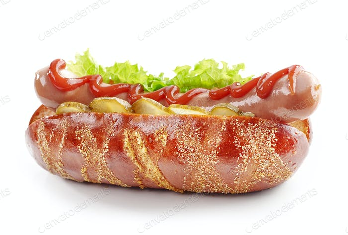 fresh hot dog on a white background