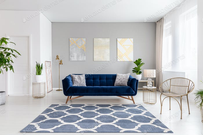 Real Photo Of Bright Living Room Interior With Royal Blue Couch Photo By Bialasiewicz On Envato Elements