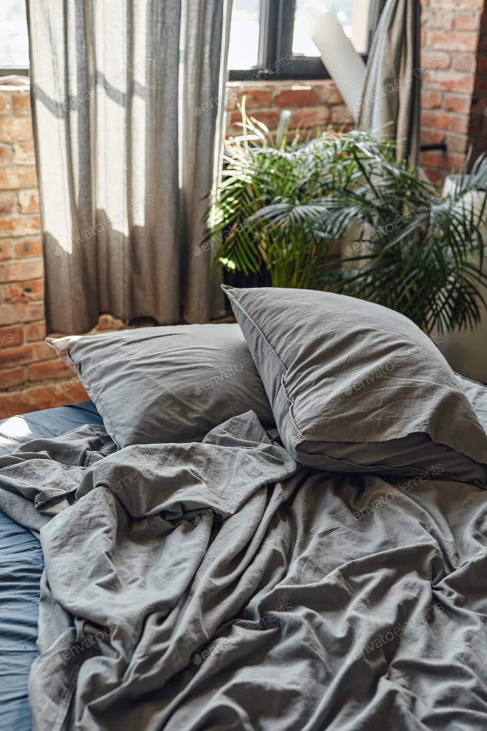 Cozy room furnished with bed and home plants