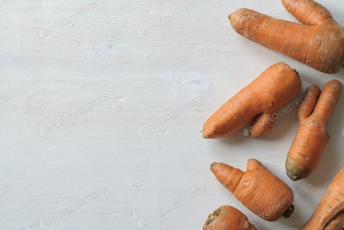 Imperfect carrots with ugly shapes. Copy space