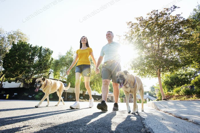 Senior couple wearing shorts walking their dogs along a street in the sunshine.