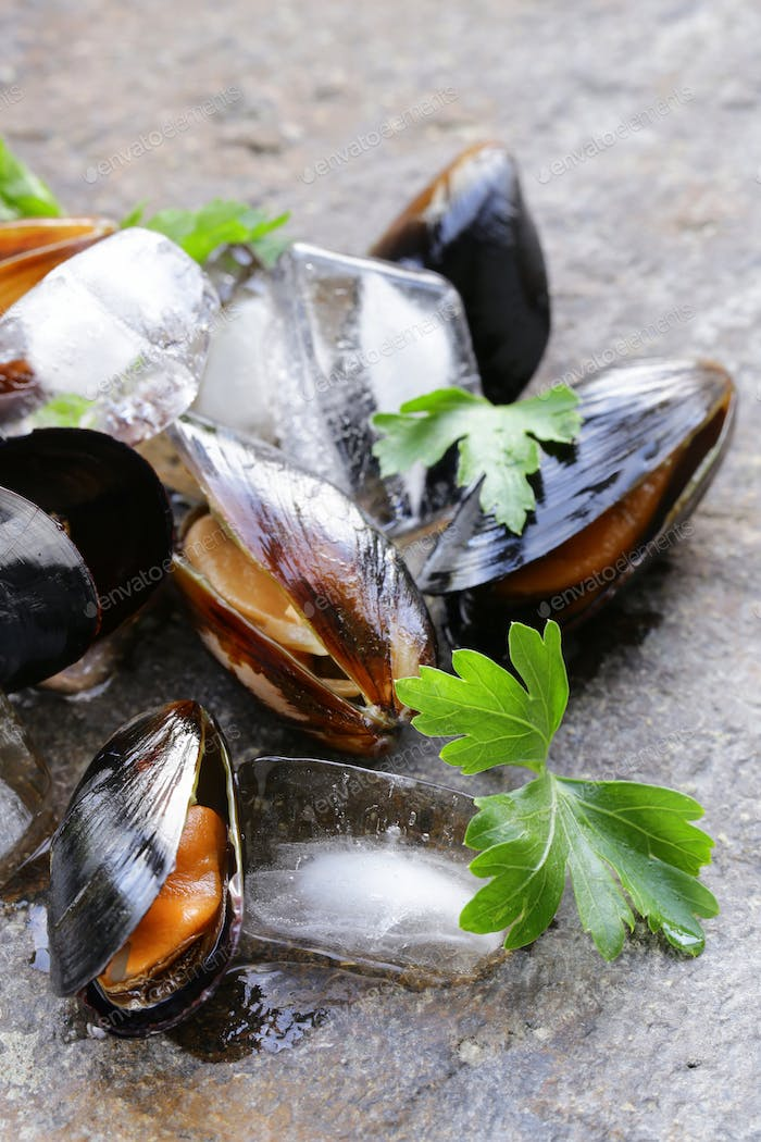 Fresh Delicious Seafood Mussels