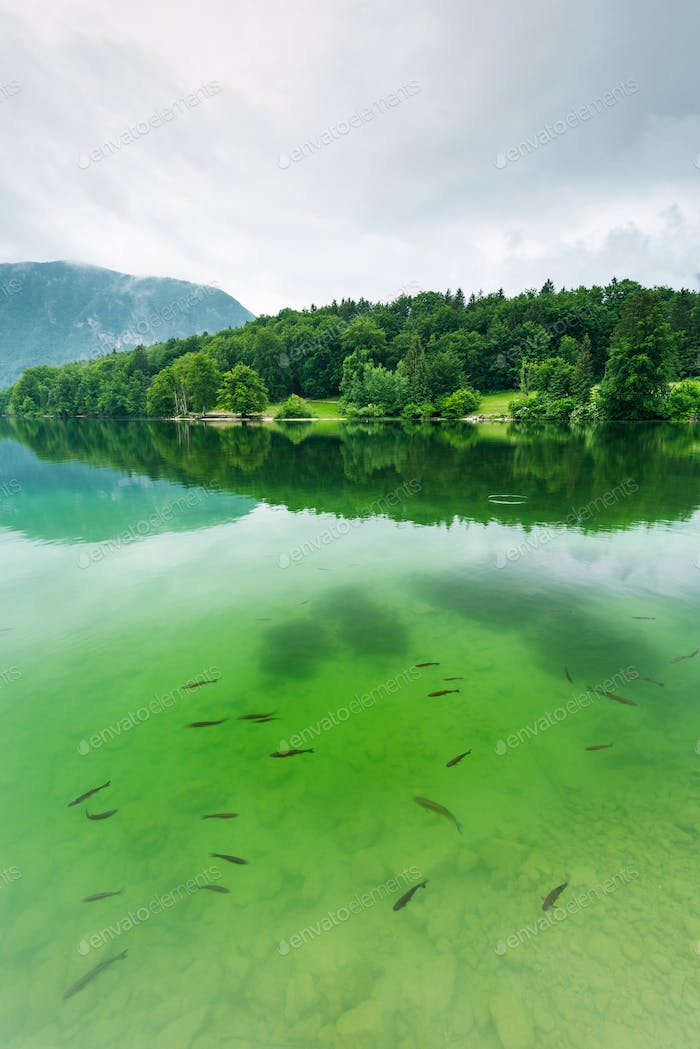 Bohinj-See, Slowenien Top-Destination