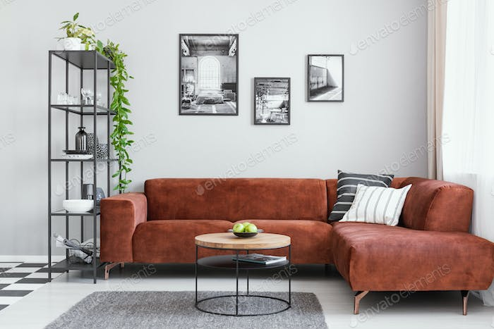 Black and white gallery of photos above brown velvet corner sofa