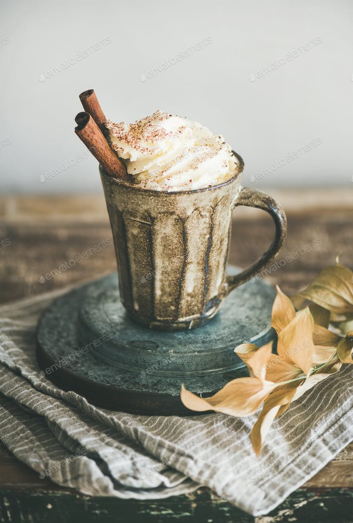 Hot chocolate with whipped cream and cinnamon in mug