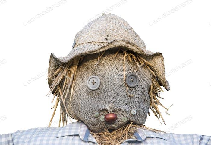 Isolated Scarecrow Head
