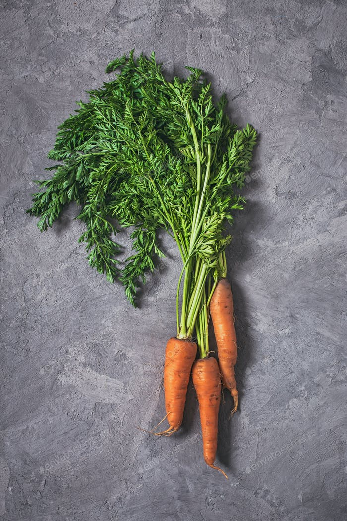 Carrots on grey