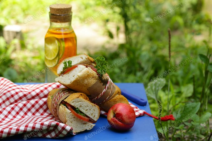 Picnic - Sandwiches and Lemonade