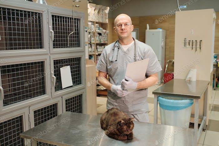 Профессиональный ветеринар в клинике