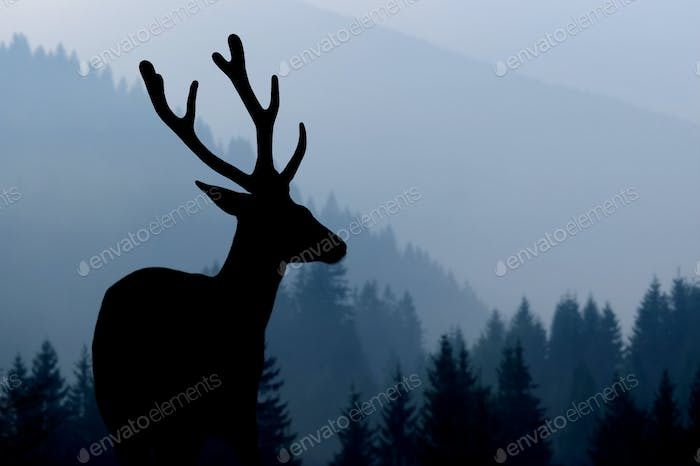 Deer silhouette on mountains background