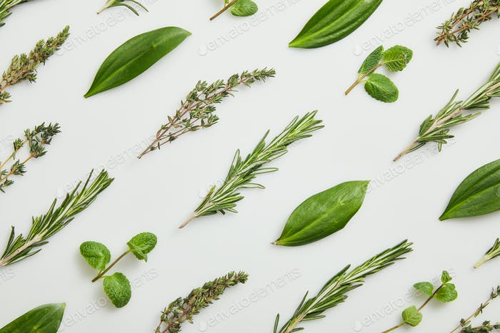Flat lay with mint, rosemary and thyme on grey background