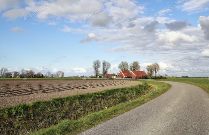 road in Dutch farmland during sunny day