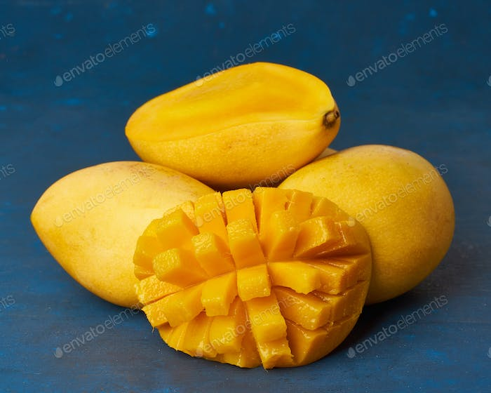 Four whole mango fruits on dark blue table and cut into slices. Large juicy ripe yellow fruits
