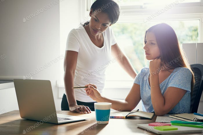 Two women business partners in a discussion