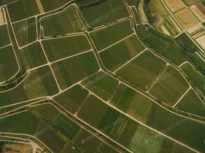 bird eye view of agricultural fields, europe