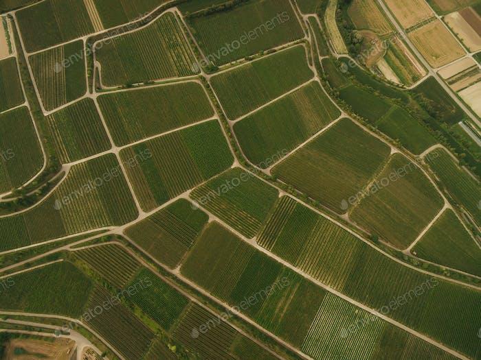 Agrarfelder aus der Vogelperspektive, Europa