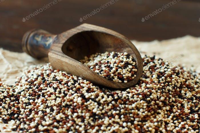 Pile of uncooked mixed quinoa grain