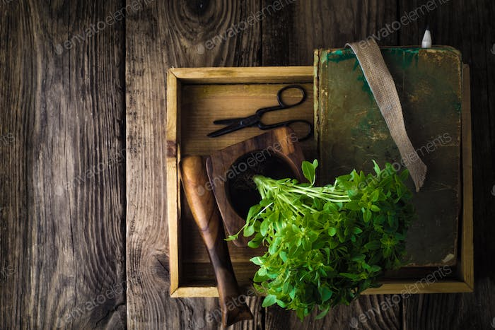 Basil, a book and a mortar on a wooden table