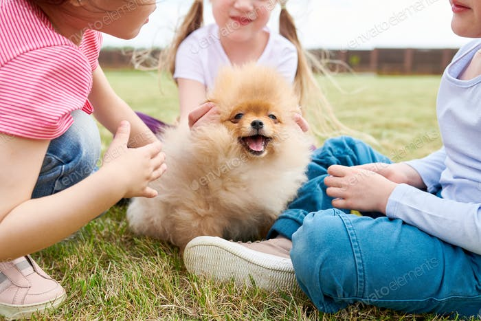 Cute Puppy with Kids