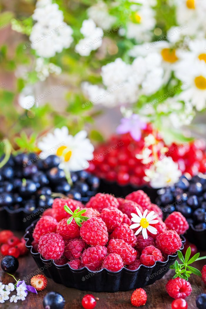 Fresh ripe summer berries - raspberry in the foreground, black a