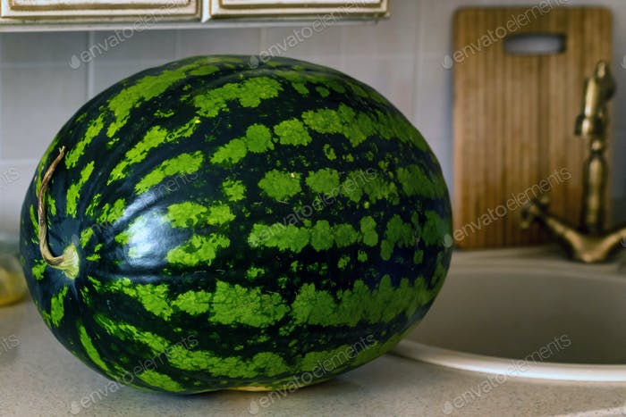 Watermelon on a countertop in the kitchen