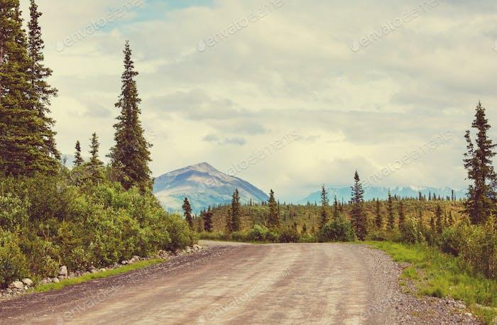 Route sur l'Alaska