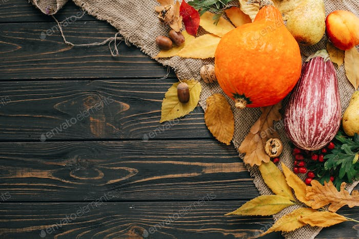 Pumpkin, autumn vegetables with colorful leaves