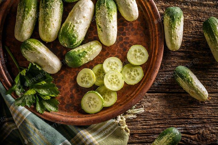 Fresh organic cucumbers