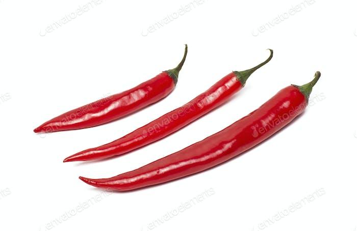 rote scharfe Chili-Pfeffer isoliert auf weißem Hintergrund