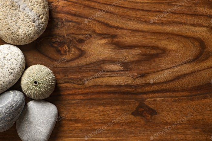 Seashell with Sea Pebbles and Stones of Various Sizes on a Wooden Background