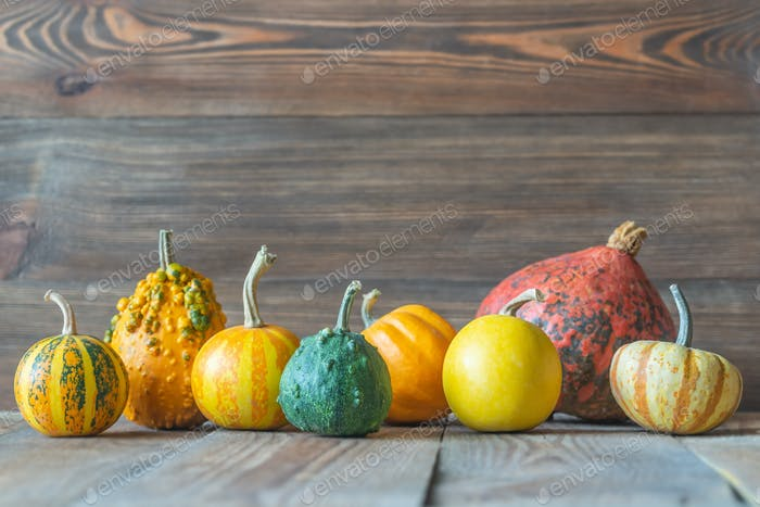 Ornamental pumpkins