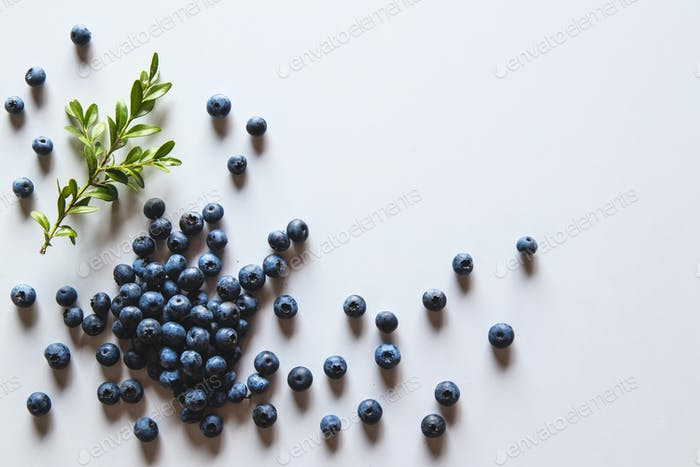 Group of fresh blueberries isolated on white background. Healthy food, health