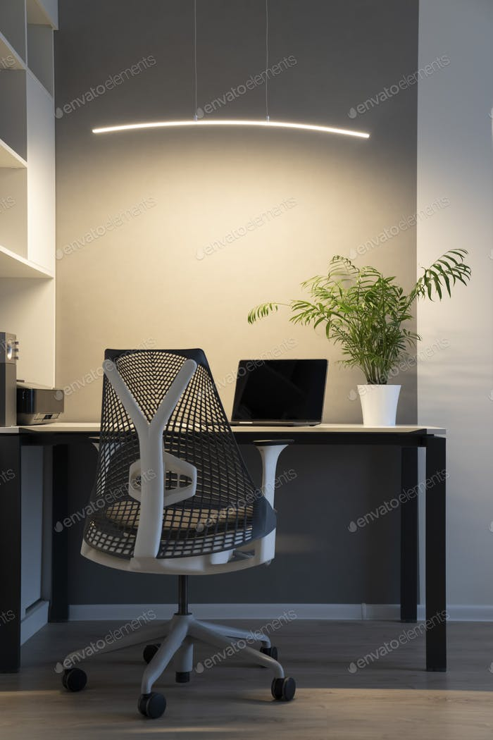 Company office corner with a modern desk, orthopedic chair, up-to-date computer and green flowerpot