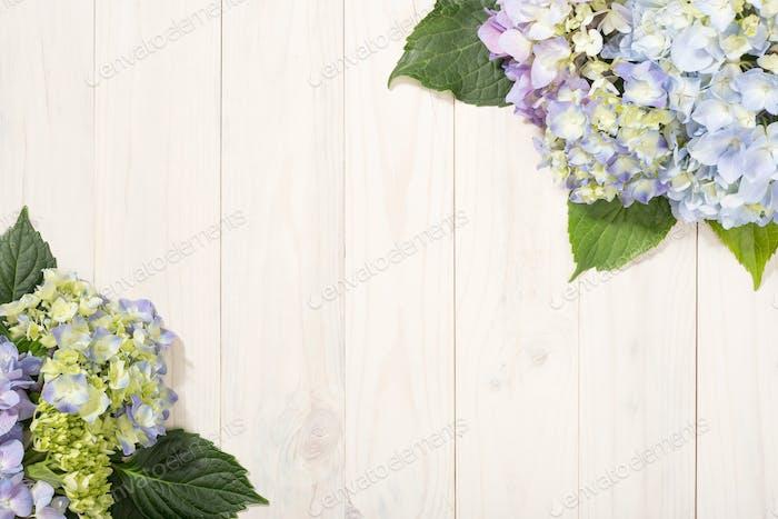 Hydrangea flowers on white wooden table