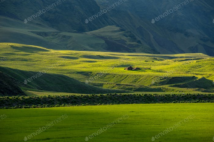 Wonderful Icelandic landscape, nature grassland in the highland mountains in late afternoon lights