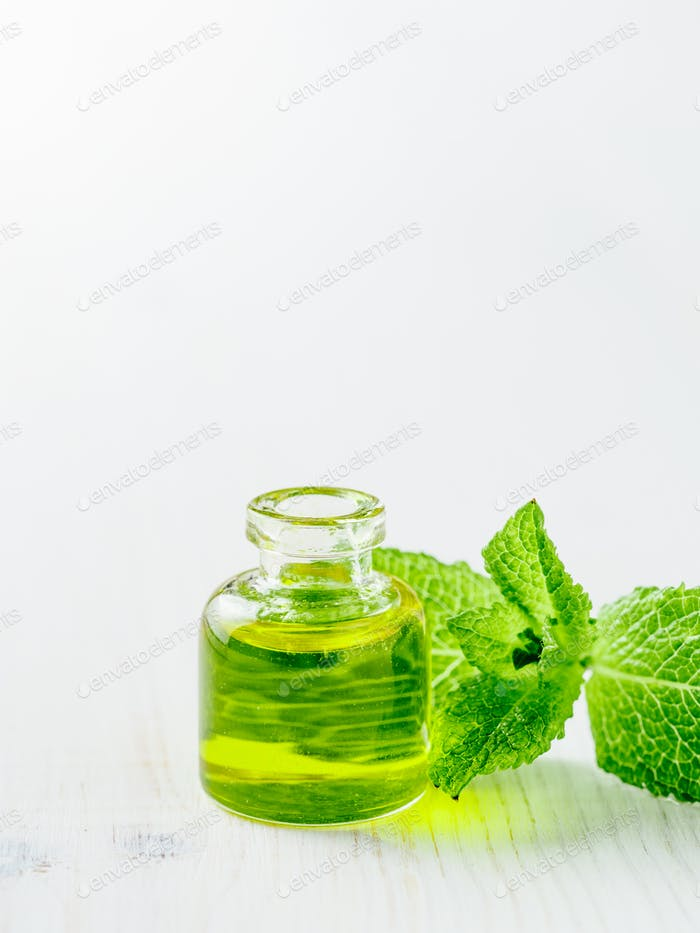 Melissa or mint oil with green leaves, copyspace