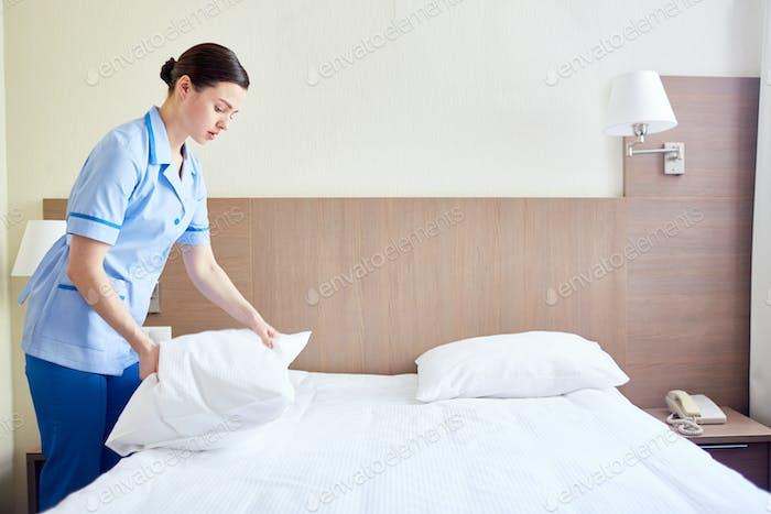 Fresh bed
