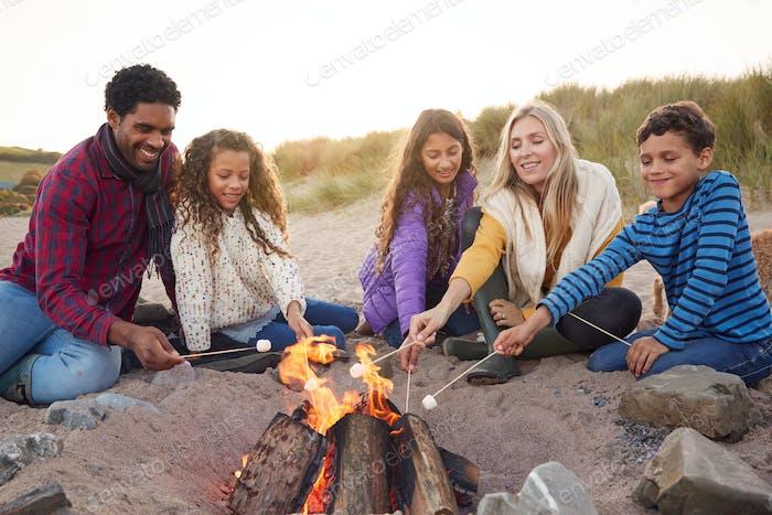 Multi-cultural Tostando malvaviscos alrededor del fuego en las vacaciones de invierno en la playa