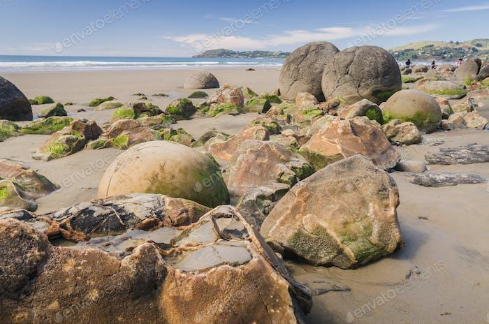 Moeraki boulders, natural wonder in New Zealand