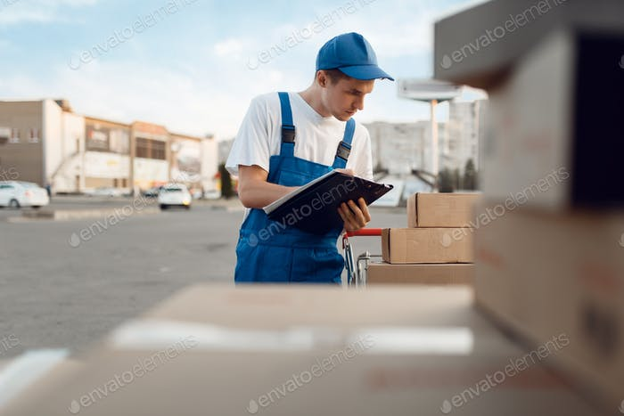 Deliveryman in uniform check parcels, delivery