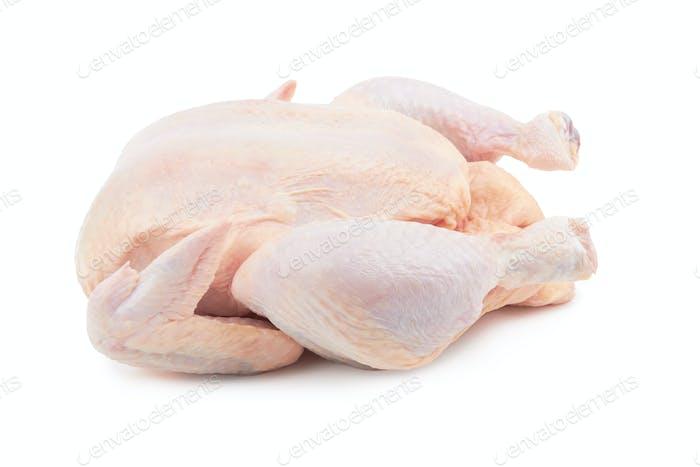 Raw fresh chicken