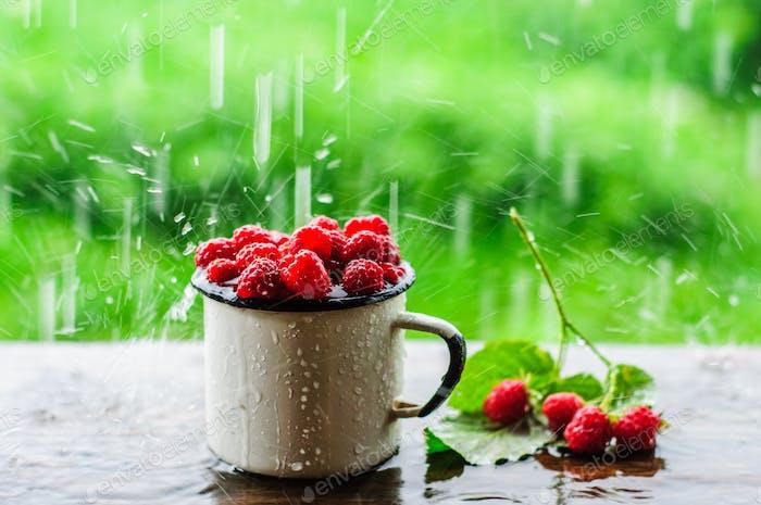 White enamel mug with fresh raspberry under summer rain