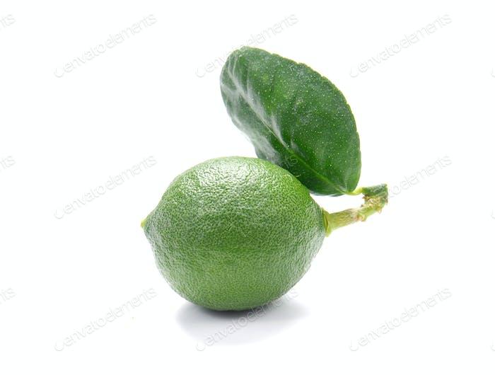 Grüne Zitronen auf weißem Hintergrund.