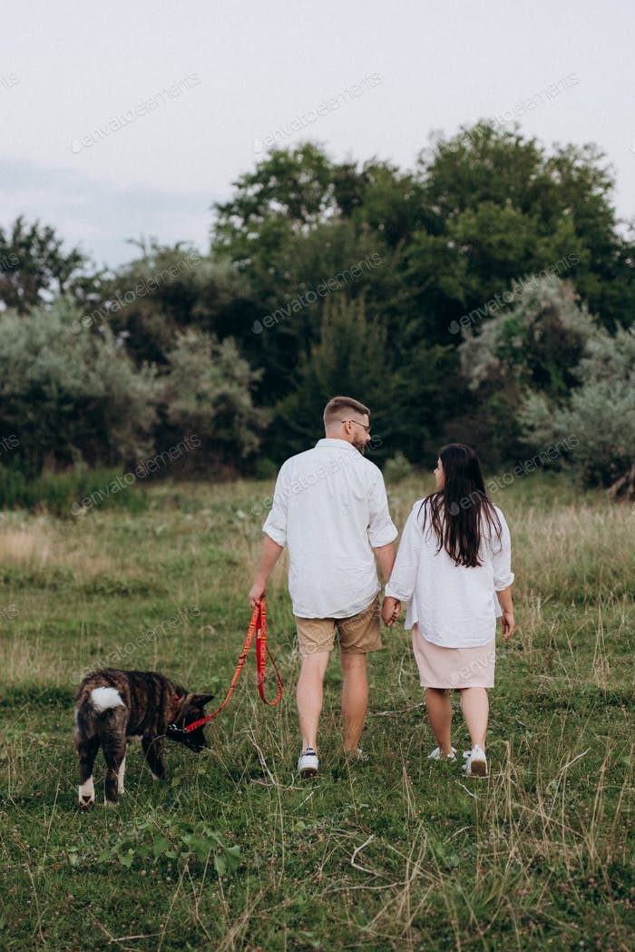 American Akita dog for a walk with a guy and a girl