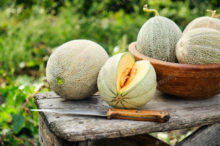 Raw organic melons