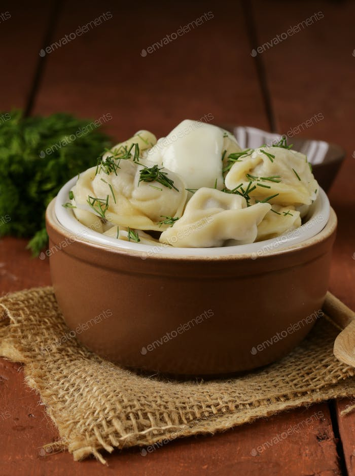 Traditional Russian Dumplings