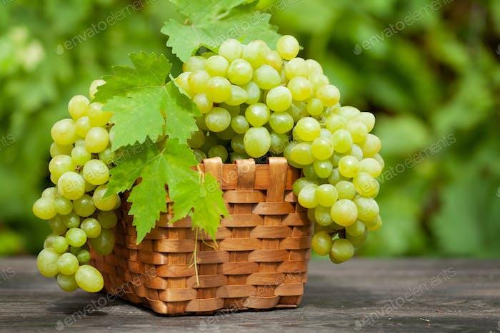 Ripe white grape on wooden table