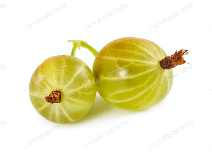 Two ripe gooseberries isolated on white