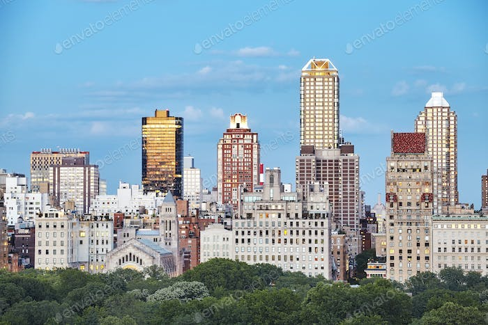 New York City skyline over the Central Park, USA.